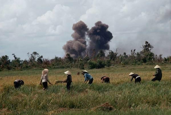 campo de arroz Vietnam bombardeo