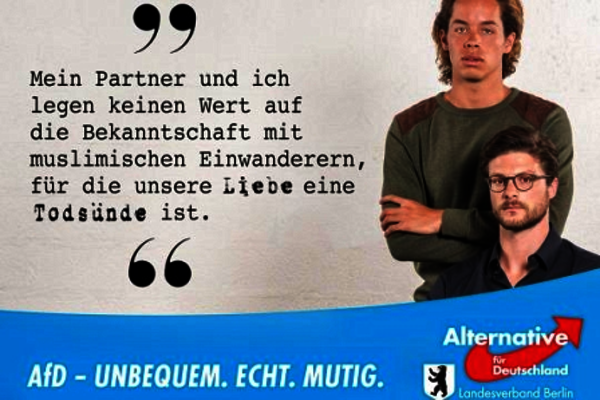 afd homosexuales 2