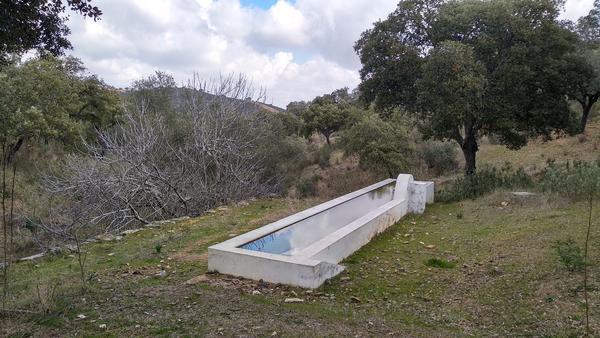 Abrevadero para ganado junto a la vereda del Salto de la Trocha en la Sierra Morena de Sevilla