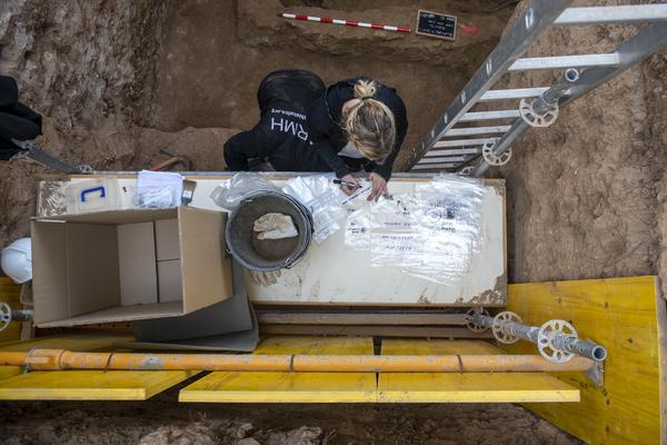 Exhumación en Guadalajara de una veintena de fusilados - 8