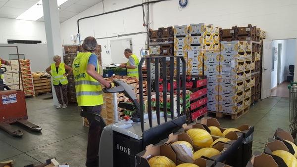 FESBAL banco de alimentos voluntarios