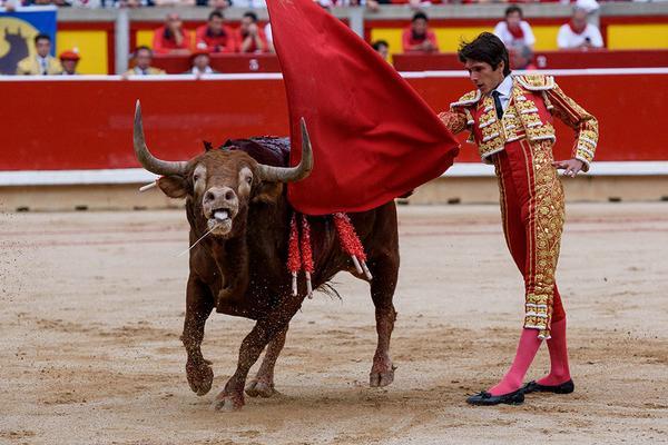 Toro herido perdiendo sangre mientras es toreado en la plaza de toros de Iruña
