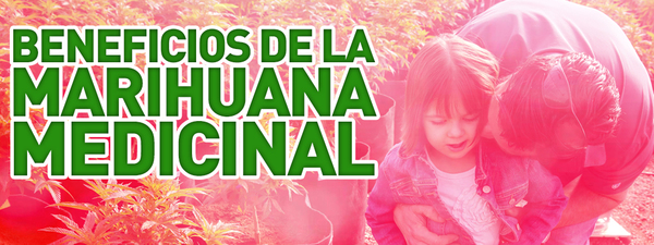 beneficios marihuana