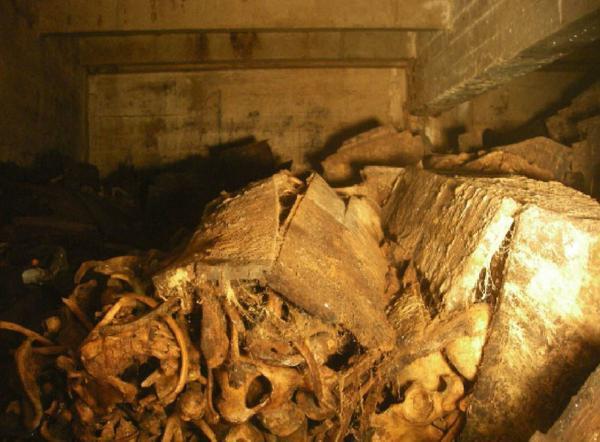 cripta valle de los caidos 1